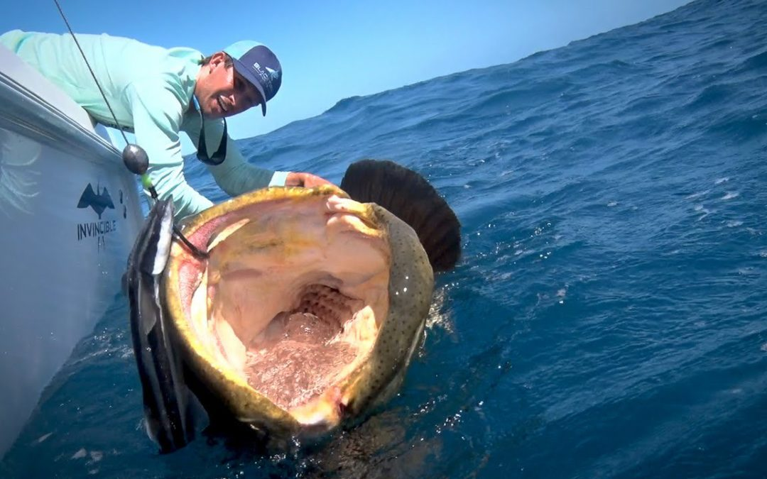 Does fishing have effect to marine ecosystem?